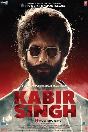Kabir Singh Hindi