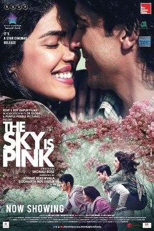 The Sky Is Pink (Hindi)
